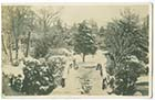 Dane Park winter 1909 Margate History